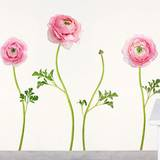 Pink Ranunculus Wall Decals Wall Decal