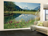 Spring Meadow Reflections Wallpaper Mural