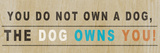 Dog Owns You I Posters