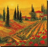 Poppies of Toscano I Stretched Canvas Print by Art Fronckowiak