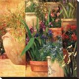 Flower Pots Left Stretched Canvas Print by Art Fronckowiak