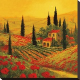 Poppies of Toscano II Stretched Canvas Print by Art Fronckowiak