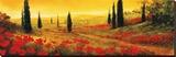 Toscano Panel I Stretched Canvas Print by Art Fronckowiak