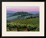 Chianti Dusk Framed Giclee Print by Michael Swanson
