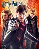 Harry Potter Trio Photo