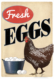 Fresh Eggs Chicken Hen Art Print Poster Fotografía