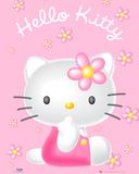 Hello Kitty Flowers Photo