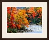 Stream in Autumn Woods Framed Photographic Print by Jack Hollingsworth