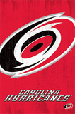 Carolina Hurricanes Logo NHL Sports Poster Posters