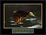 Leaders: Bald Eagle Posters