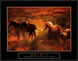Spirit: Horses Prints