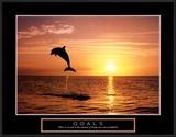 Goals: Dolphins Prints by Craig Tuttle