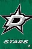 Dallas Stars Logo NHL Sports Poster Print