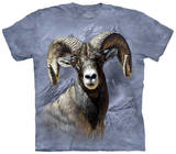 Big Horn Sheep T-shirts