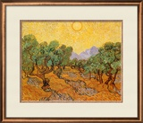Sun over Olive Grove, 1889 Framed Giclee Print by Vincent van Gogh