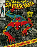 Marvel Classic- Spiderman Cover Prints