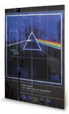 Pink Floyd - Dark Side Of The Moon 30th Anniversary Wood Sign Targa di legno