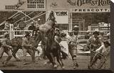 Rodeo Daze Stretched Canvas Print by Barry Hart