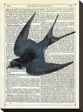 Blue Bird Reproduction transférée sur toile par Marion Mcconaghie