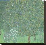 Rosebushes Under the Trees, ca. 1905 Stretched Canvas Print by Gustav Klimt