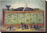 The Aquarium Stretched Canvas Print