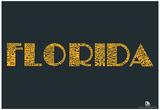 Florida Cities Text Poster Print
