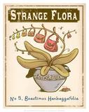 No.5 Beautimus Hanbaggafolia Posters by Phil Garner