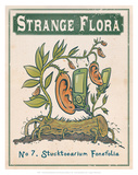 No.7 Stucktoearium Fonefolia Poster by Phil Garner