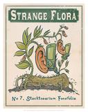 No.7 Stucktoearium Fonefolia Poster by Phil Garner