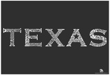 Texas Cities Text Poster Photo