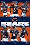 Chicago Bears - Team NFL Sports Poster Poster