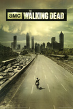 The Walking Dead Season 1 TV Poster Print