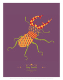 WWF Stag Beetle - Animal Tails Poster by Annette D'Oyly