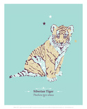 WWF Amur Siberian Tiger - Animal Tails Print by Annette D'Oyly