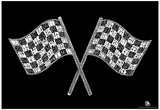 Race Tracks Checkered Flag Text Poster Photo