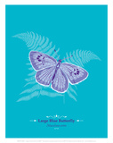 WWF Large Blue Butterfly - Animal Tails Prints by Annette D'Oyly