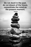 Buddha Focus Quotation Photo