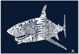 Shark Types Text Poster - Reprodüksiyon