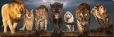 Große Katzen Leinwand