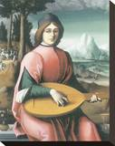 Portrait Of A Young Man With A Lute (Allegory Of Youth And Love) Stretched Canvas Print by Francesco Ubertini Bacchiacca