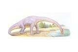 Palaeozoology, Jurassic Period, Dinosaurs, Bothriospondylus, Illustration by Ryz Hajdul Posters