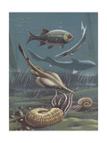 Prehistoric Fishes, Underwater View, Illustration Prints