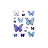 Cerulean Butterflies Lámina fotográfica por Christopher Marley