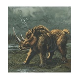 Woolly Rhinoceros (Coelodonta Antiquitatis) in Rain, Illustration Prints