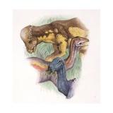 Palaeozoology, Cretaceous Dinosaurs, Ornithomimus, Thescelosaurus and Pachycephalosaurus Prints