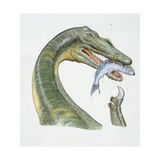 Illustration of Baryonyx Posters
