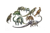 Various Dinosaurs, Illustration Poster