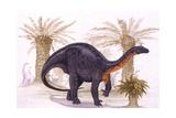 Illustration of Blikanasaurus Poster