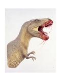 Palaeozoology, Cretaceous Period, Dinosaurs, Tyrannosaurus Rex Prints