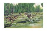 Illustration of Stegosaurus Fighting Poster